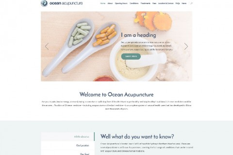 Ocean Acupuncture Website Design