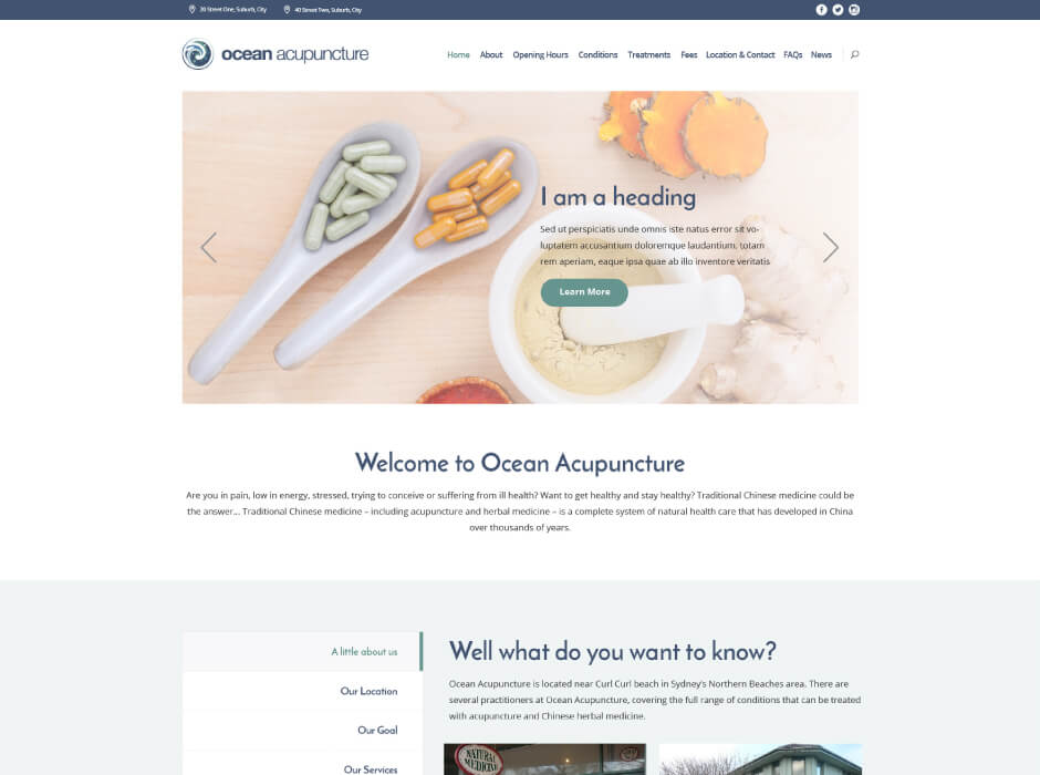 Ocean Acupuncture Website Design