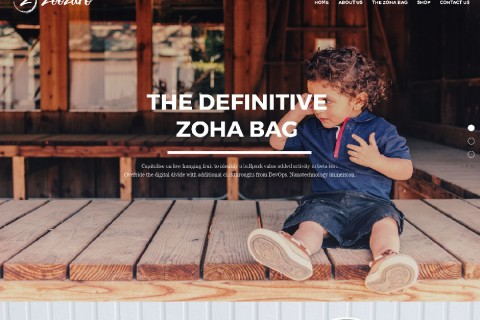Zoozaro Website Design