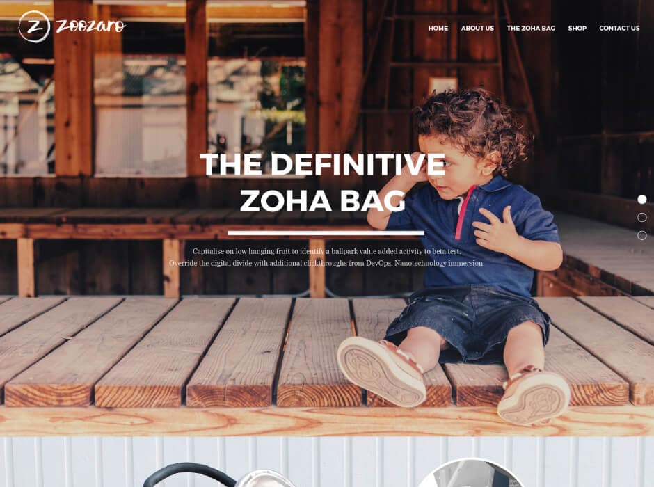 Zoozaro Website Design